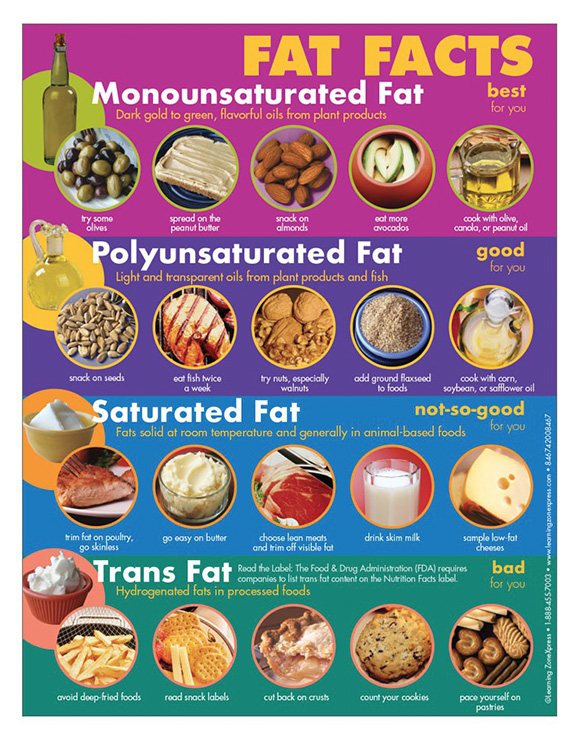 Nutrition Obesity And Diabetes Prevention Fat Facts Handouts